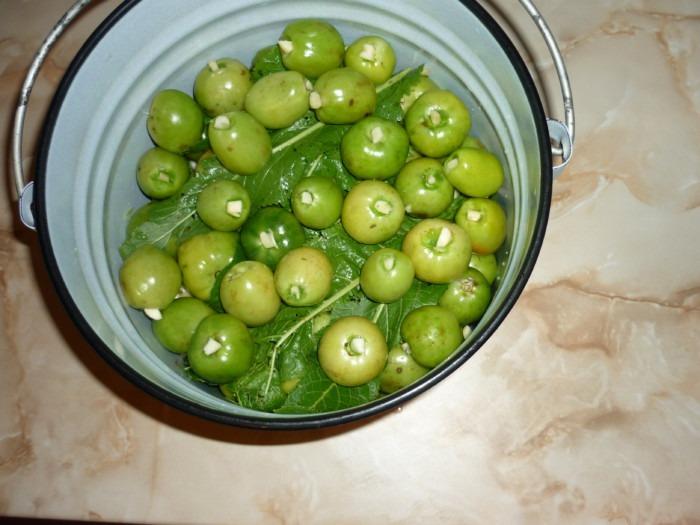 зеленые помидоры засолка